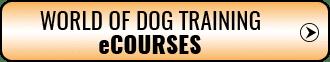 Dog training ECourse