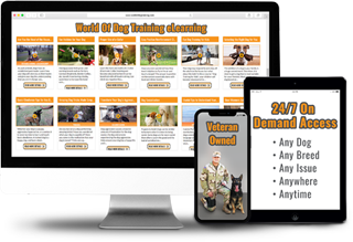 Online Dog Training Made Easy.